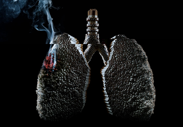 Graphic source:  http://www.oneeyeland.com/top_image.php?imgid=4331; Lung by Marcus Hausser