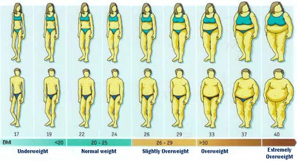 BMI Graphic