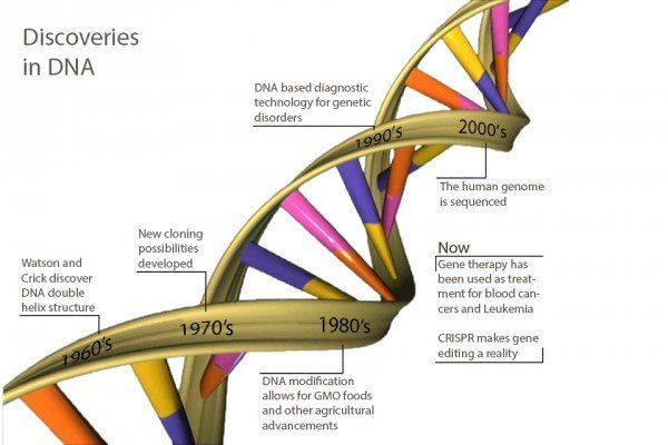 DNA Discoveries