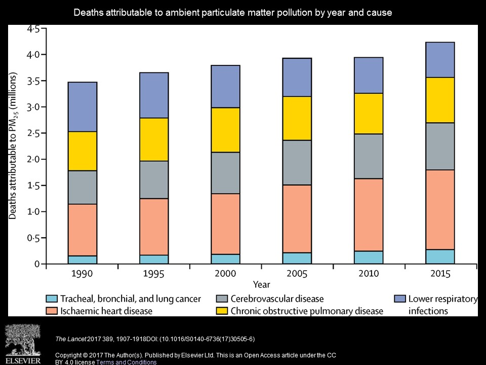 Deaths attributable to ambient particulate matter pollution by year and cause